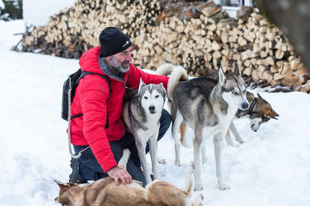 Optune patient med hundar